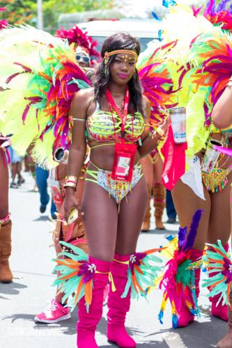 St Lucia Carnival 2017 Monday - (11)