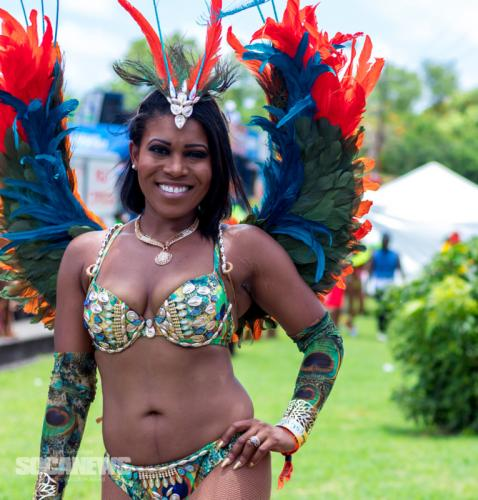 St Lucia Carnival 2017 Monday - (18)
