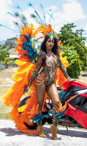 St Lucia Carnival 2017 Monday - (33)