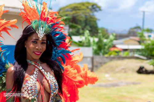 St Lucia Carnival 2017 Monday - (35)